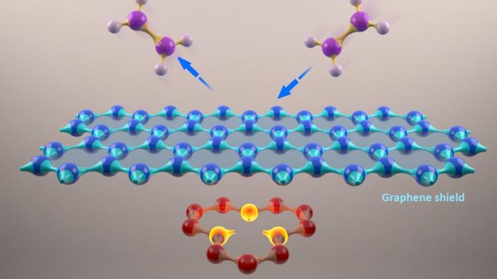 Graphene decharging and molecular shielding