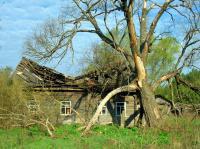 Abandoned House near Chernobyl