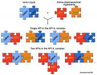 API-IL Concept