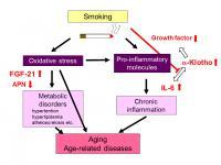 Smoking and Aging
