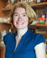 Amy Gladfelter, Dartmouth College