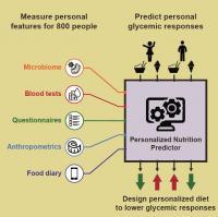 Personalized Nutrition Predictor