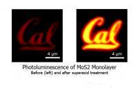 Monolayer Cal Logo