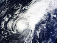 Terra Image of In-fa