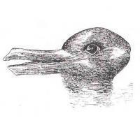 Duck/Rabbit