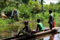 Field Work in Congo
