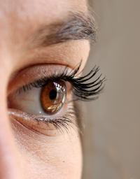 A Healthy Eye