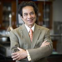 Dr. Pernendu Dasgupta, University of Texas at Arlington