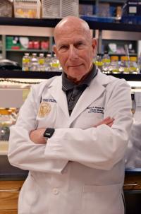 Barry P. Rosen, Florida International University