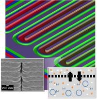 Microfluidic