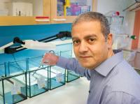 Abdel El Manira, Karolinska Institutet