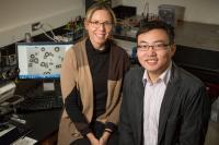 Nancy Sottos and Wenle Li, University of Illinois at Urbana-Champaign