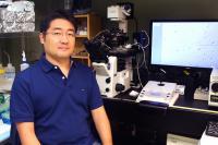 Dr. Yasuhiro Yamauchi, University of Hawaii at Manoa