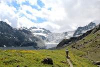 Swiss Alps Ecotourism
