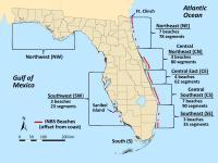 Florida Sea Turtle Nesting Beaches