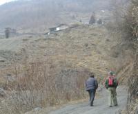 Walking in Wolong