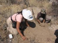 Fieldwork on Beetle Poison