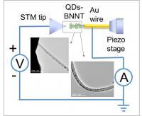 BNNT Microscopy