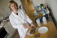 Researcher Anne Nilsson, Lund University