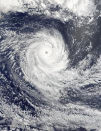 Terra Image of Uriah