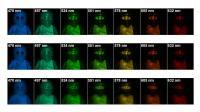 Hyperspectral Imaging Models