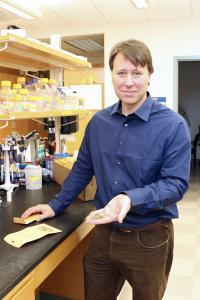 David Bertioli, University of Georgia
