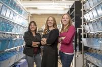 Jennifer Freeman, Maria S. Sepulveda and Sara E. Wirbisky, Purdue University