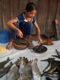 Girl at Fish Market