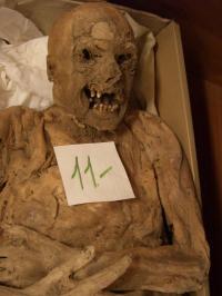 Hungarian Mummy