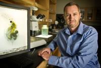 Matthew Walsh, University of Texas at Arlington