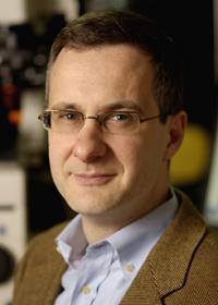 Denis Wirtz, Johns Hopkins University