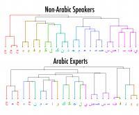 Alphabet Graphic