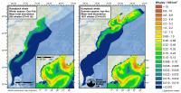 Cetacean Density Map