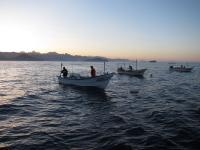 Basurto Coop Fleet