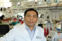 Qi-Long Ying, University of Southern California - Health Sciences