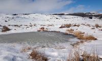 Wetland-winter