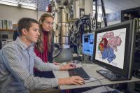 Eva Nogales and Robert Louder, DOE/Lawrence Berkeley National Laboratory