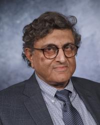 Dr. Vikram Nanda, University of Texas at Dallas