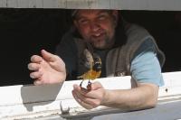 Bird Observatory Release