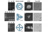 MIT-DNA-Origami-2