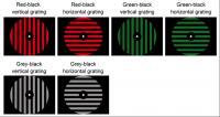 Perception Patterns