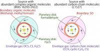 Schematic Illustration of the Molecular Distribution around the Protostars