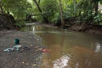 River Fieldwork