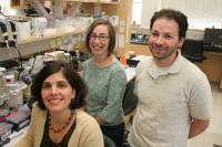 Florida State University Biologists