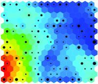 Bacterial Model 2-D (SOM) Map