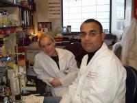 Valerie LeBleu, Raghu Kalluri, American Society of Nephrology