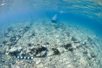 Diver over Pavlopetri Site