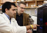 Shyam Khatau and Denis Wirtz, Johns Hopkins University