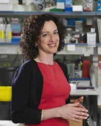 Professor Karen Avraham, Tel Aviv University