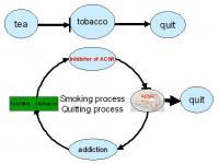 Cessation Effect of Tea Filters on Cigarette Smoking